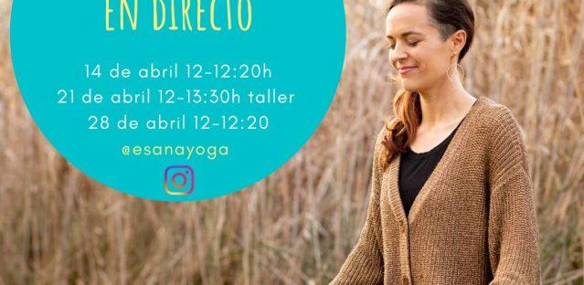 Mindfulness MBSR Mañanas Online. Sevilla Primavera 2021