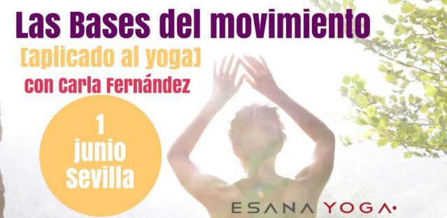 LAS BASES DEL MOVIMIENTO [aplicado al yoga]